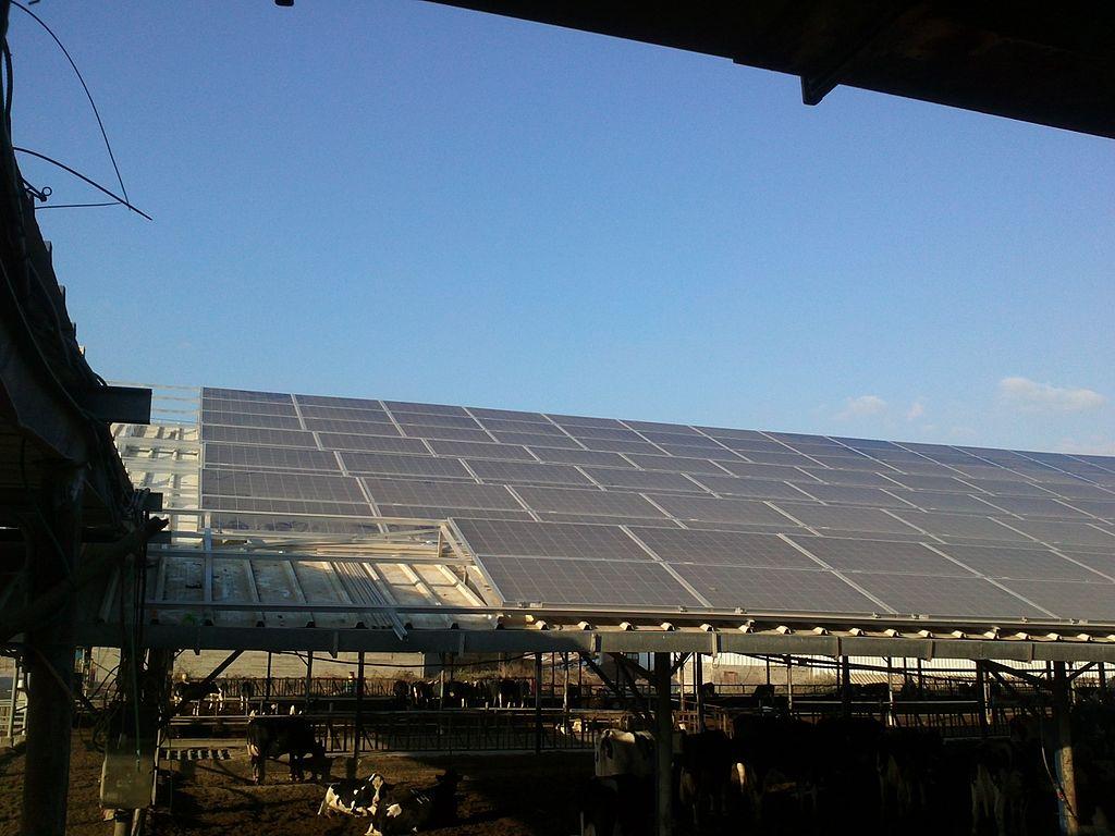 Автономные источники электроэнергии, солнечная электроэнергия, монтаж систем энергообеспечения, солнечные панели, солнечные батареи, монтаж солнечных батарей, солнечная электростанция